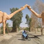 Нышпорка в пустыне. Мерзуга (часть 1 )
